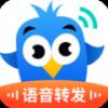 2021星力人气下载APP_飞鸟语音转发app