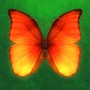 消灭蝴蝶游戏 v1.0 最新版