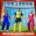 2020年巴基斯坦板球杯软件