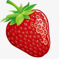 草莓转 官网免费版下载