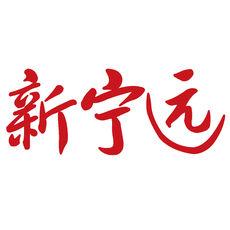 新宁远 中文绿色版下载