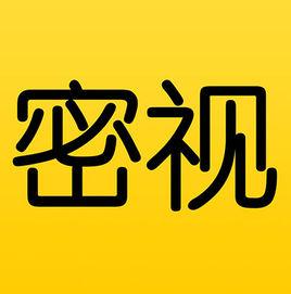 密视 中文版下载