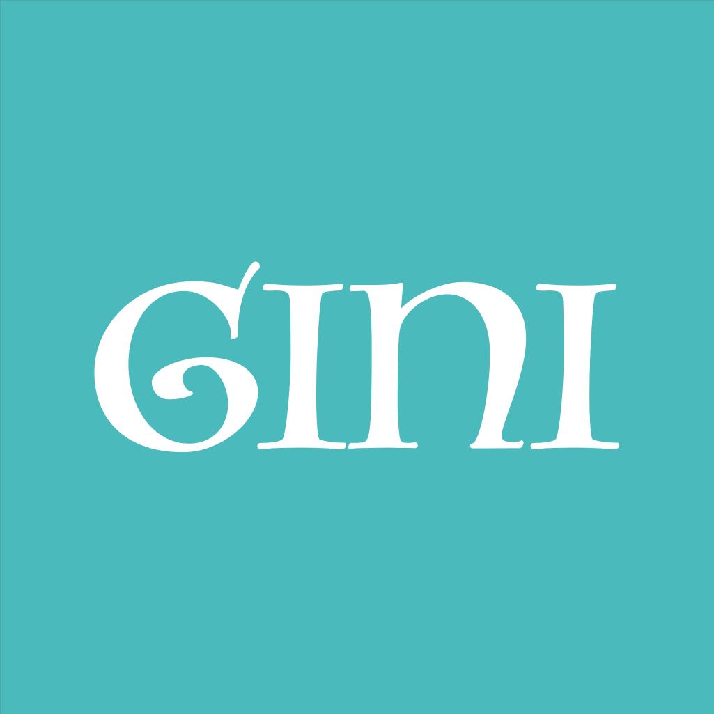 Gini软件