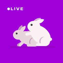 夜兔直播app苹果版下载 v1.2 iPhone手机版